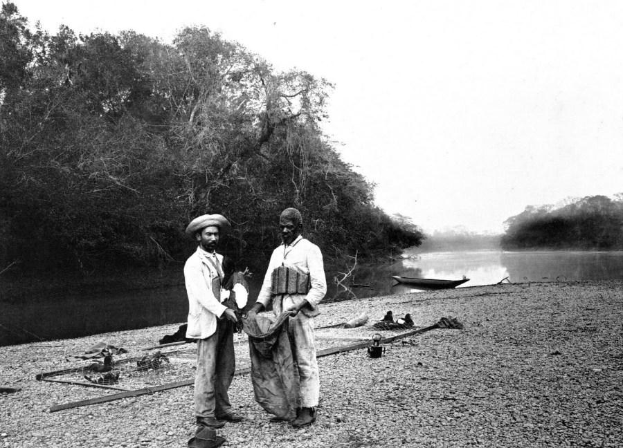 Rio Atibaia, tiragem dos patos da rede para serem conduzidos ao rancho, por volta de 1900. Coleção Austero Penteado.