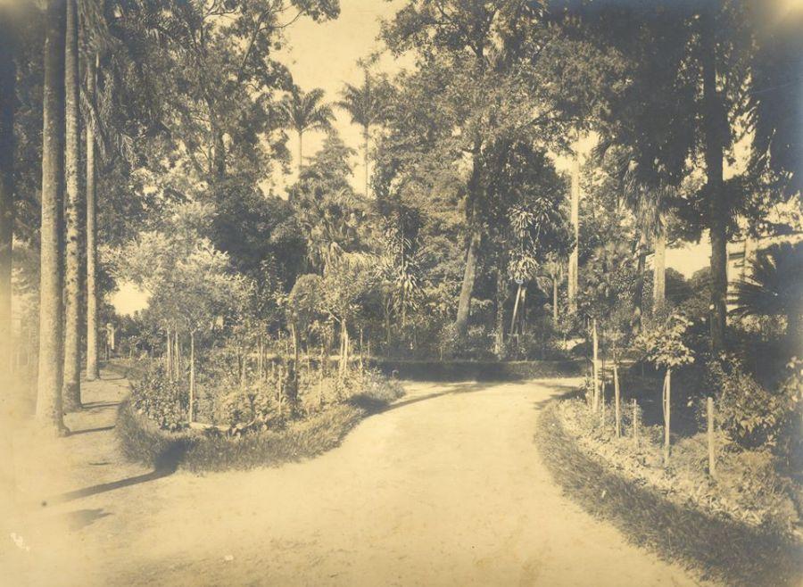 Chácara Guanabara2