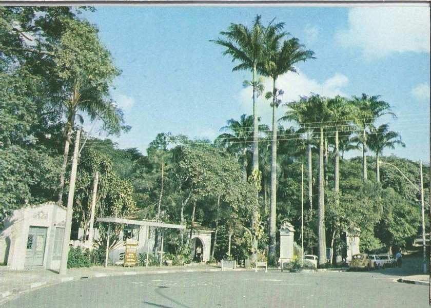 7886-postal-campinas-s-p-bosque-jequitiba-792401-MLB20309661739_052015-F